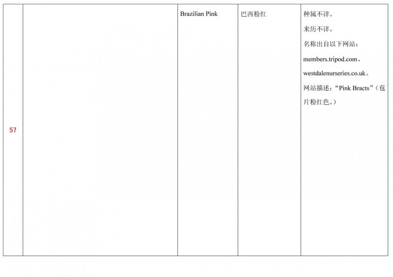 名称未核准的三角梅栽培品种收录表058.jpg