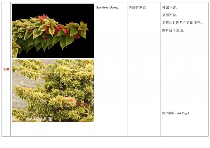 名称未核准的三角梅栽培品种收录表351.jpg