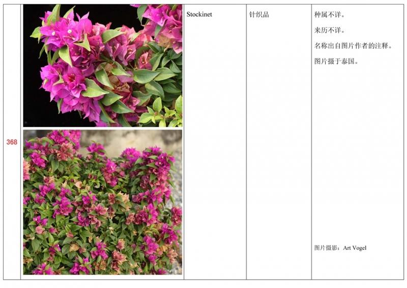 名称未核准的三角梅栽培品种收录表369.jpg