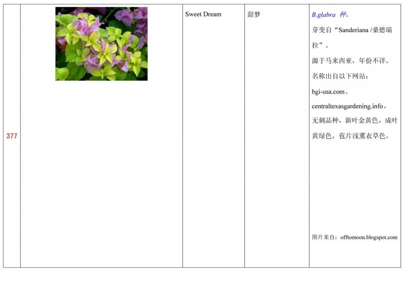 名称未核准的三角梅栽培品种收录表378.jpg